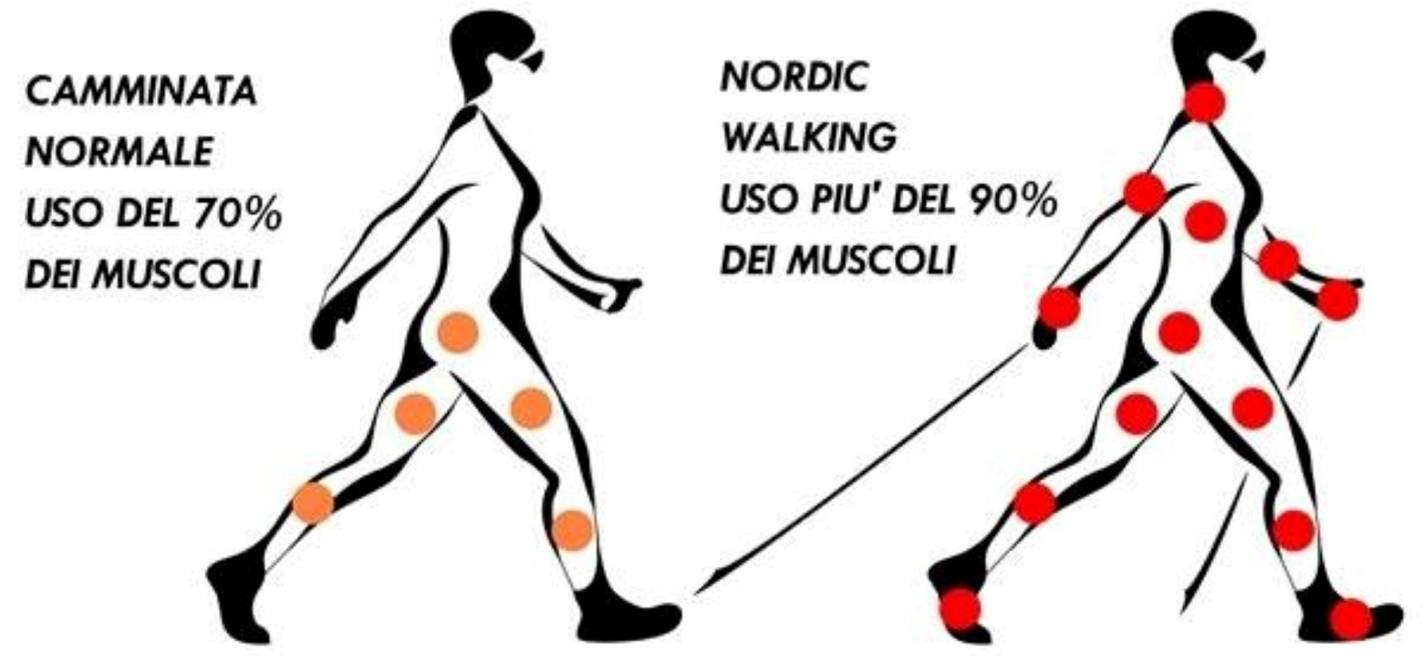 Confronto nordic walking con camminata normale